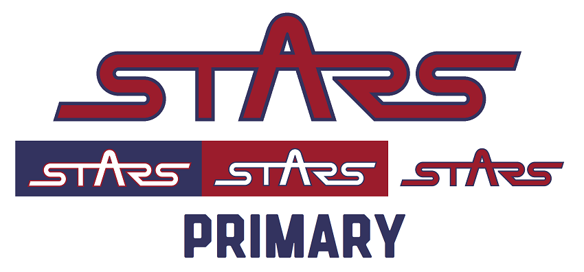 Washington Stars Wordmark